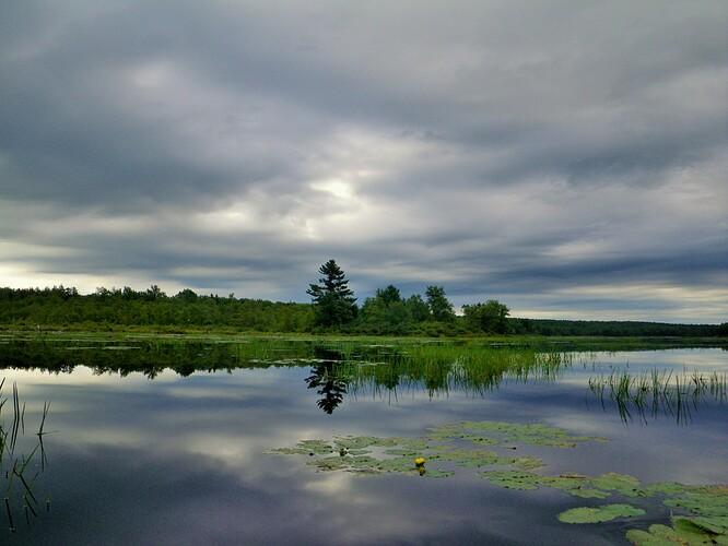 Bradys lake 8-11-13 (52)