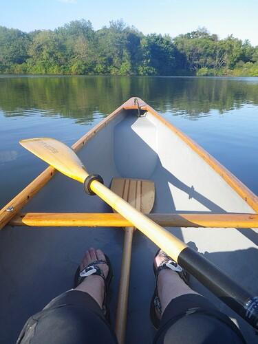 Lady Bug and wood paddle