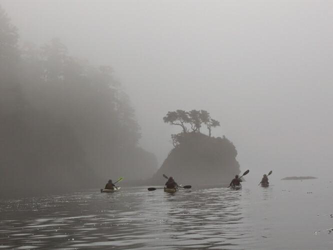 fog-paddle
