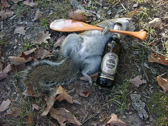 River dorks & squirrel #3